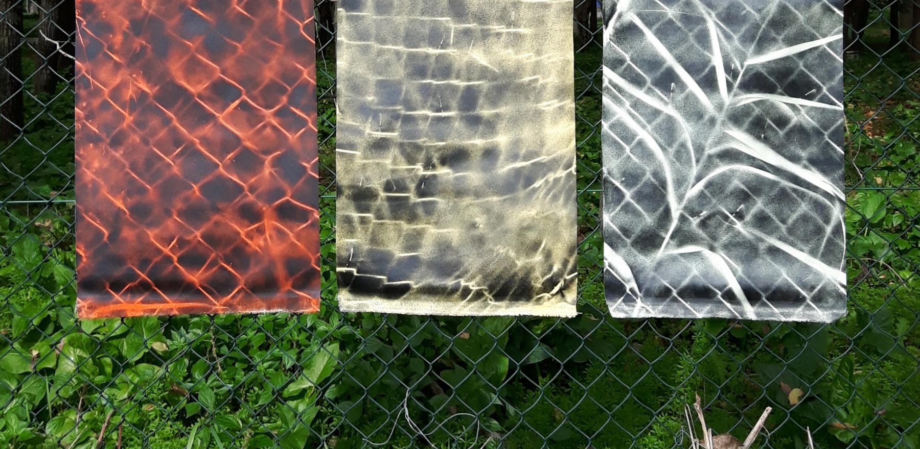 untitled field study [triptych]