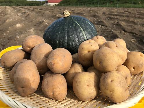 詰合せセット5kg(かぼちゃ+キタアカリ+インカ)