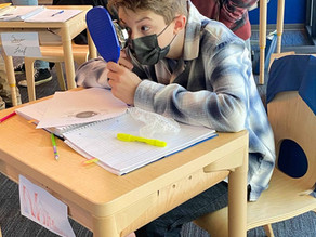 Grade Eight finishes the second week of its anatomy block by learning about the five senses.