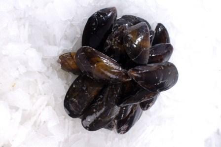 Cornish Mussels 2Kg