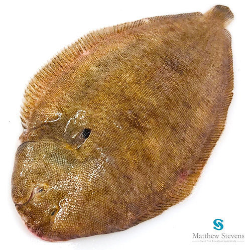 Frozen Whole Dover Sole (450g approx)