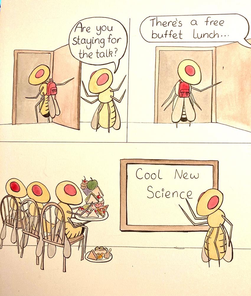 Free Buffet Lunch?