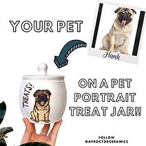 Pet portrait jar.PNG