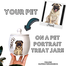 Pet portrait jar.PNG