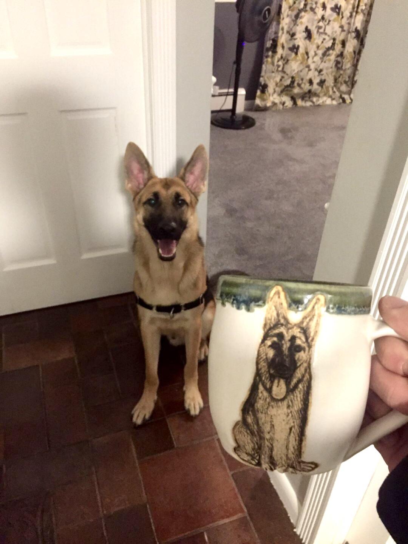 German Shepherd Portrait Mug