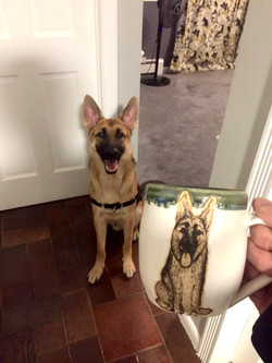German Shepherd Portrait Mug