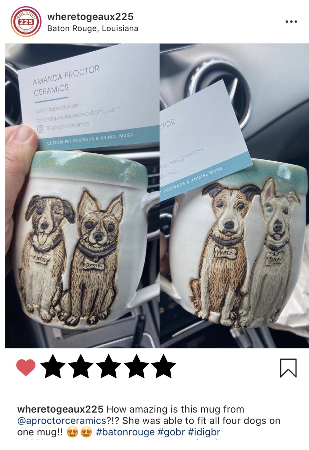 Double Pet Portrait Mug