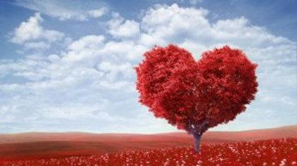 Valentines Snapbars