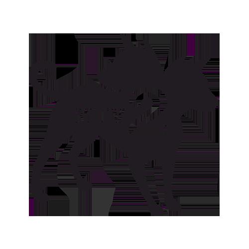mtv2-forsite