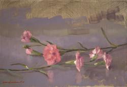 Les fleurs sur la table