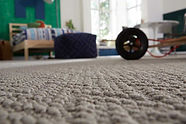 Morinville Flooring Shaw Carpet