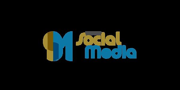 bsm_logo.png