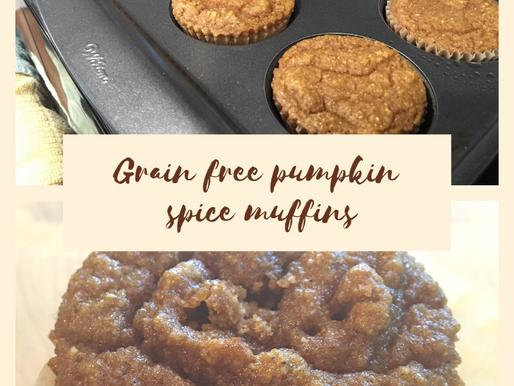 Grain free pumpkin spice muffins