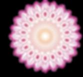 pink flower mandala.png