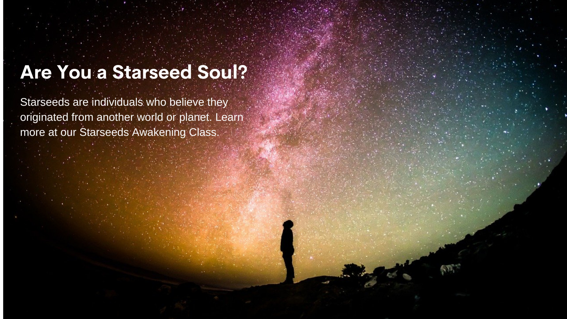 Starseeds.png