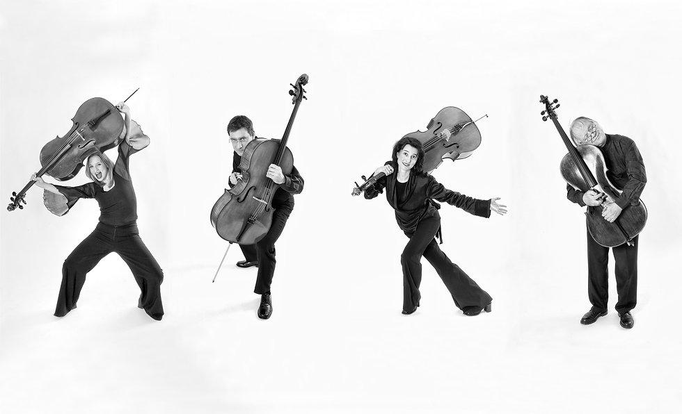 DSC_3786_Cellogruppe_für_Homepage_NEU2