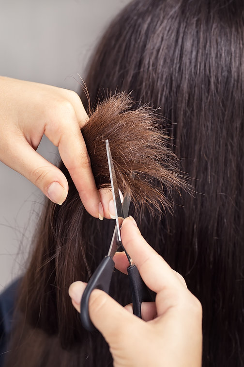 The Hair Lounge | Milan, MI 48160. Hair Salon.