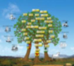 ANCESTORS - FAMILY TREE - LUXURY LIVING