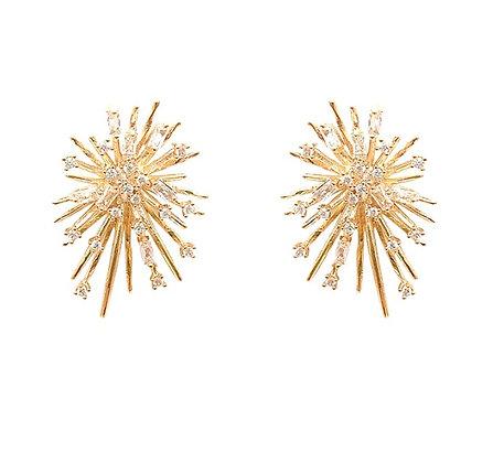 Firework Earrings