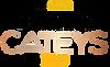 FoodService-Cateys-2019-WINNER-768x469 e