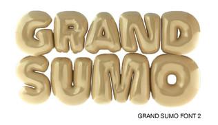 Project3_Grand_Sumo_04_edited.jpg