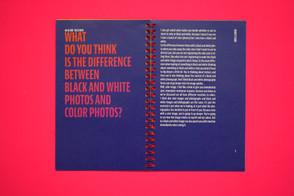 _DSC3557 copy.jpg