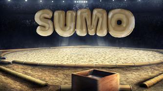 Sumo-arena.jpg