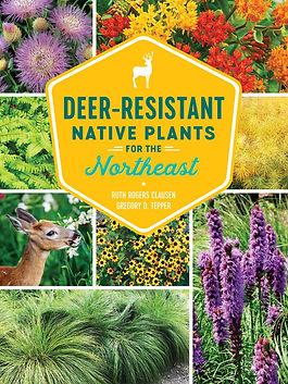 Deer-Resistant Native Plants For The Northeast