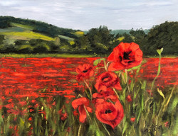 Let us Rejoice and Plant Poppies