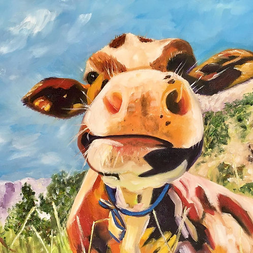 Quirky Cow