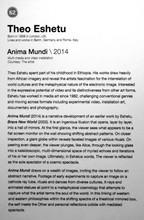 62_Theo Eshetu_b.1958, UK_Anima Mundi (2014)