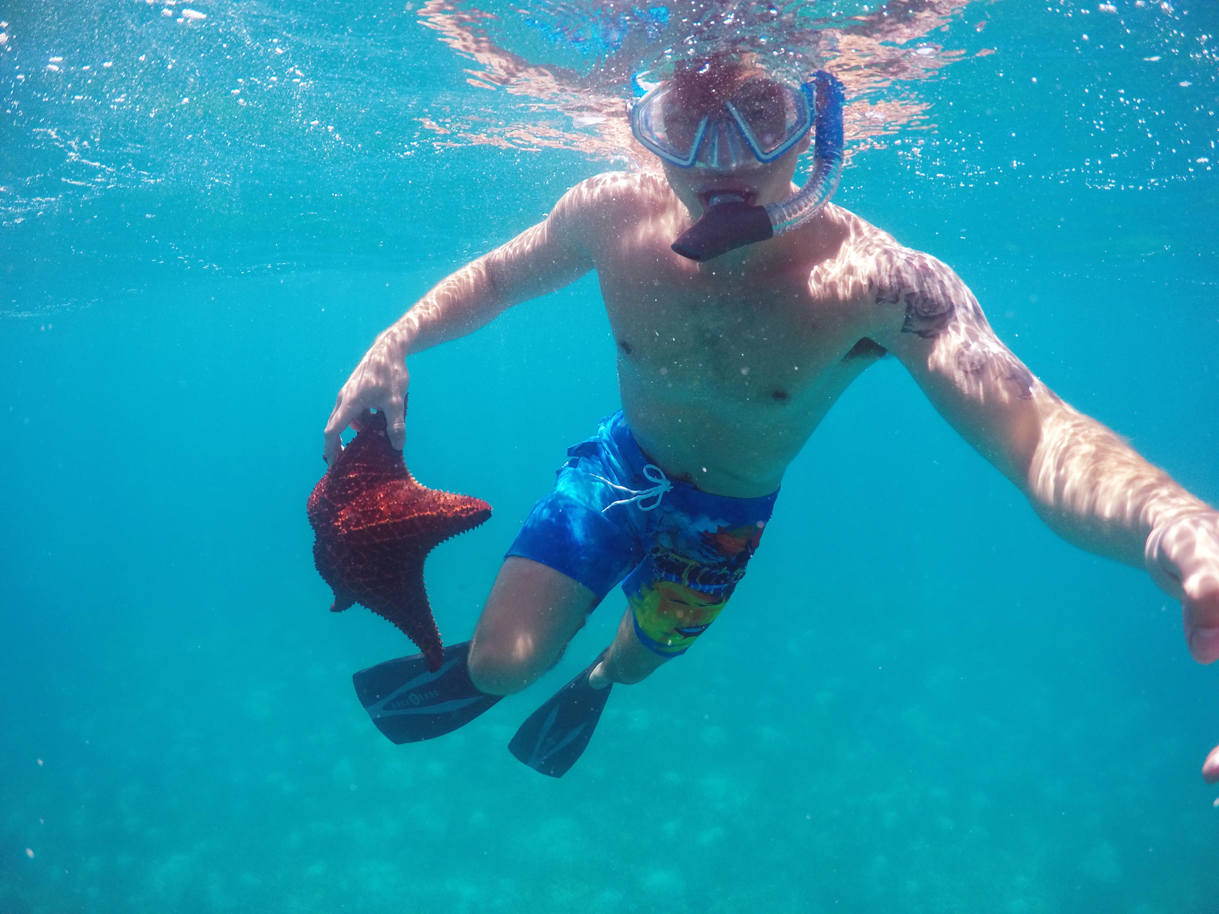 Starfish Snorkel Exuma