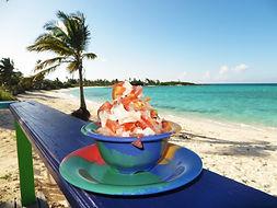 Conch Salad Exuma Bahamas