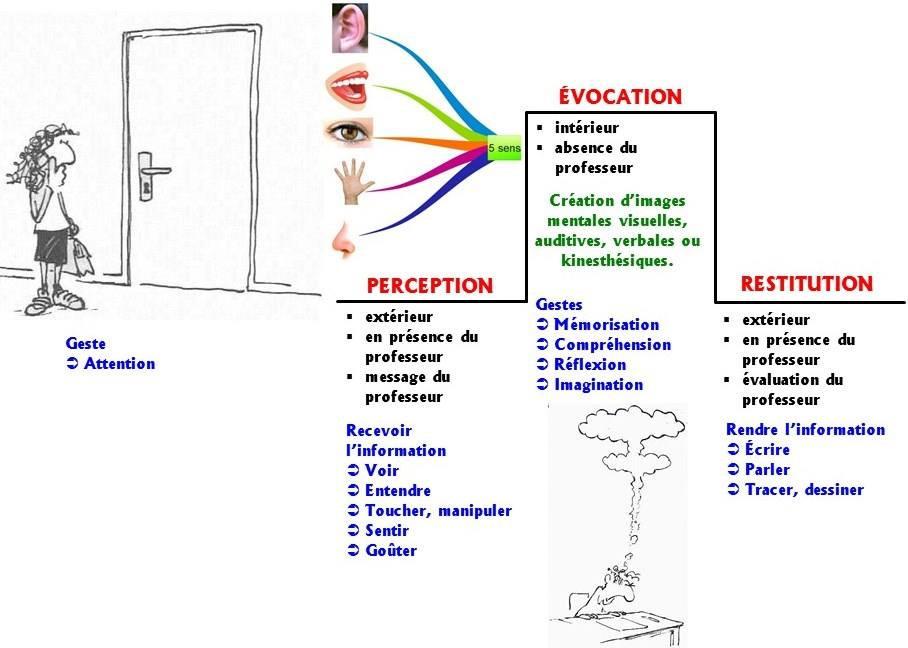 Les 5 gestes mentaux dans le processus global de la gestion mentale