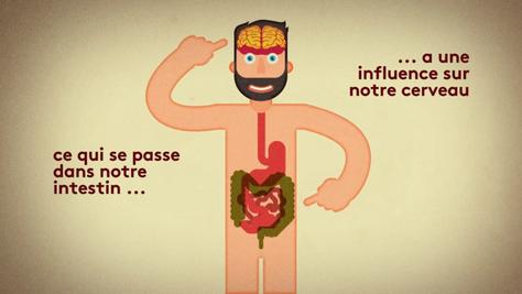 [VIDÉO] Comment notre intestin est lié à notre humeur ?