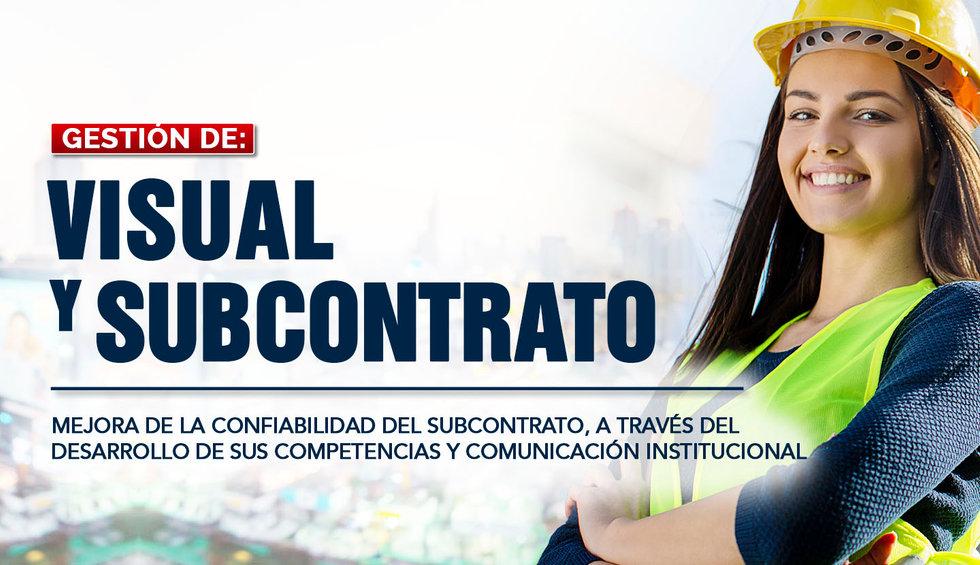 4. VISUAL Y SUBCONTRATO.jpg