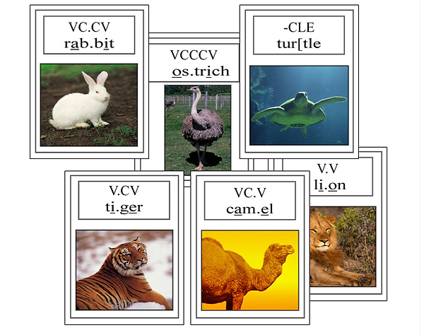 syllable division animals.png