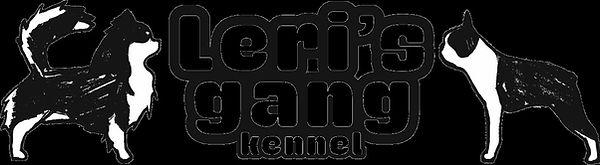 thumbnail_Logo Leri's Gang per web.jpg