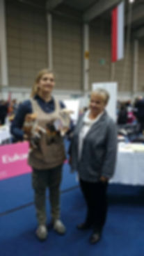 expo austria