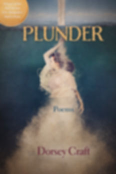 Plunder_WorkingCover_12.jpg