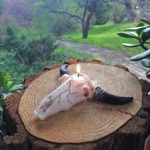 ZenDen 'Bull Skull' Candle