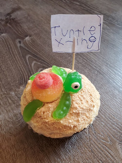 1st Place Decorated Cupcake - Rourke Loewen