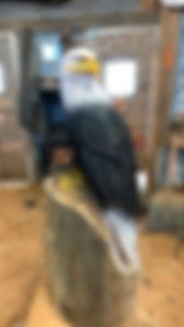 Eagle.jpg