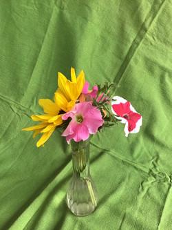 1st Place Fresh Flower Display - Oliver Stewart