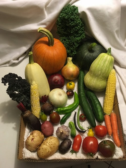 2nd Place Collection of Vegetables - Mary Cannon