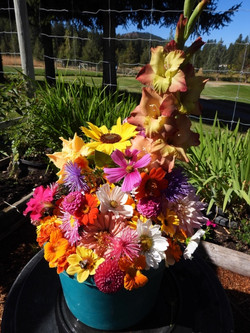 1st Place Assortment of Garden Flowers - Norma Howes