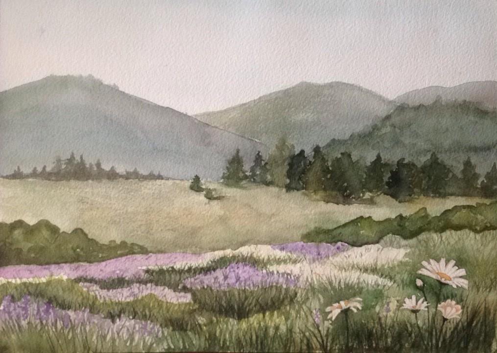 2nd Place Boundary Okanagan Landscape - Jade Fossen