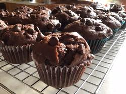 Decorated Cupcake - Cohen Salz