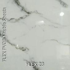 FLEX 23.mp4
