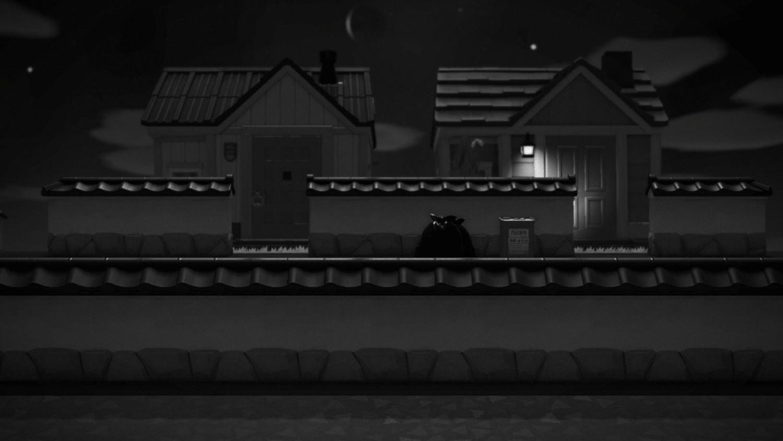 Neighbors by Night